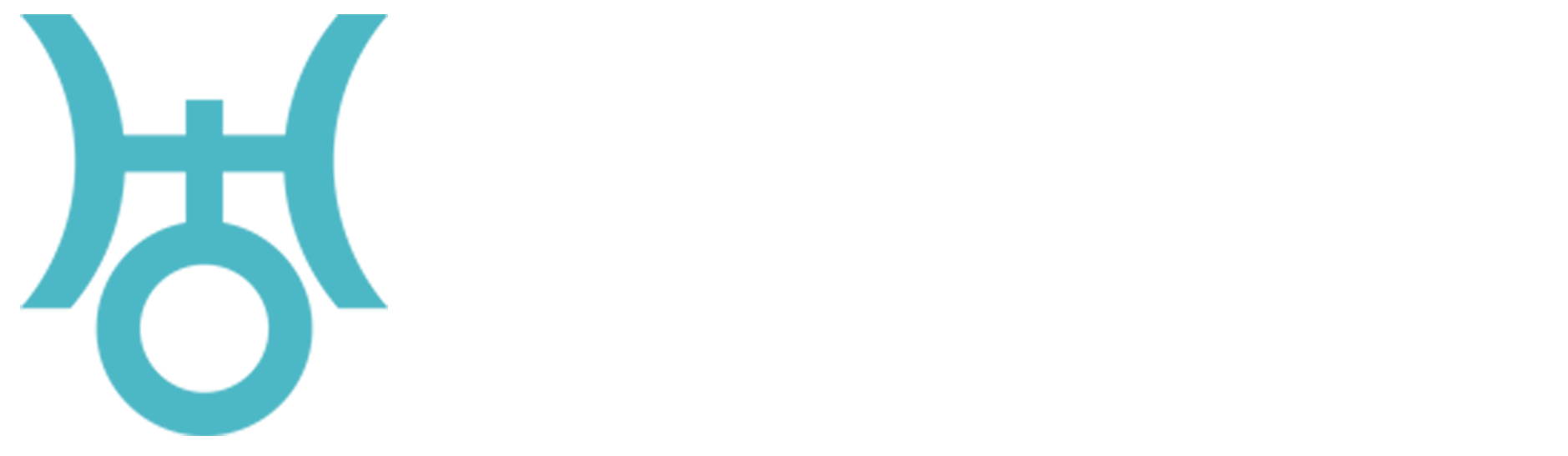 Basque Develop